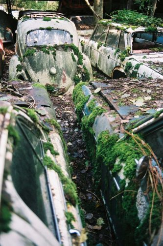 the-infinite-beauty-of-decay-024