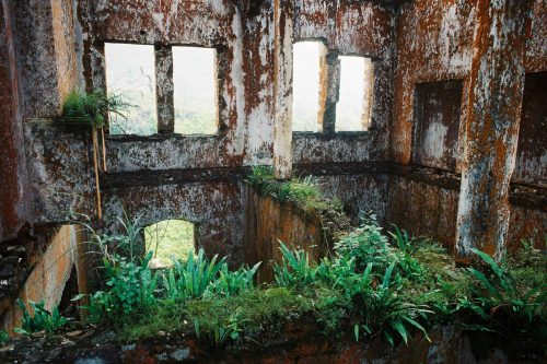the-infinite-beauty-of-decay-078